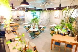 吉祥寺駅から徒歩5分のデザイナーズカフェ!撮影ロケから、セミナーや会議、貸切パーティまで対応可能!の写真