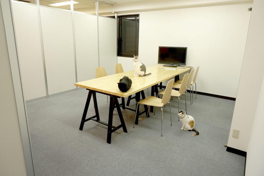 猫がいる会議室Bamboo-Grove.biz : 会議室の会場写真