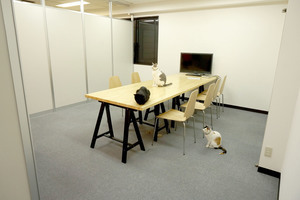 【新宿駅】かわいい猫とのんびり会議ができる会議室の写真