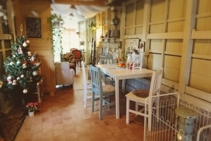 森のアトリエCafe Ann : 多目的ルームの会場写真