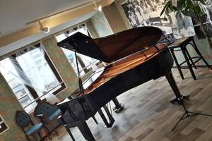 【大津市石山】アンネの音楽教室 : 練習室②(2人以上使用)の会場写真