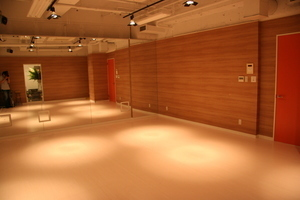 SOUL AND MOTION DANCE STUDIO : C studioの会場写真