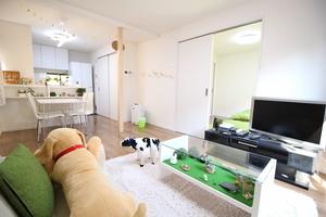 阿佐ヶ谷にある、おしゃれできれいな1LDKのお部屋を貸切!の写真